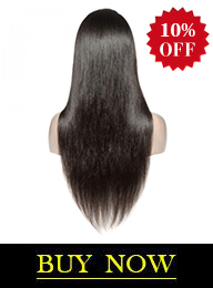 Brazilian Virgin Hair Straight Undetectable HD Full Lace Wig